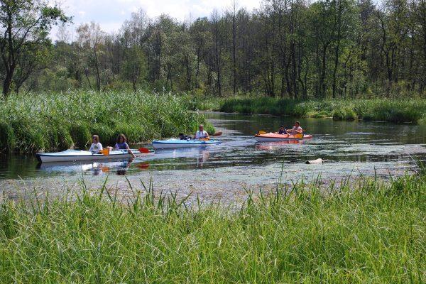 3 super miejsca na wakacje z dziećmi w Polsce
